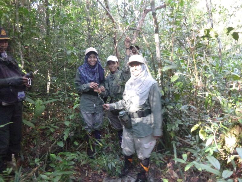 Female Ranger Team Installs Cameras in Cardamoms Wildlife Alliance Female Ranger 800x600