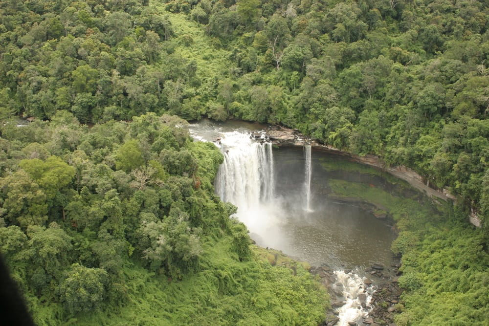 Southern Cardamom Forest Registered as a National Park! Southern Cardamom Forest Registered as a National Park! Southern Cardamom Forest waterfall