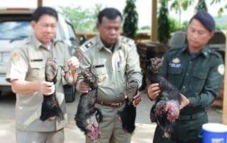 smuggler arrested for wildlife trafficking in banteay meanchey Smuggler Arrested for Wildlife Trafficking in Banteay Meanchey Smuggler Arrested for Wildlife Trafficking 320x202