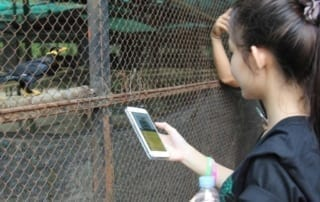 Wildlife Alliance Launches Khmer App to Combat Widllife Trafficking WildScan app 320x202
