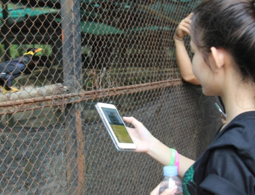 Wildlife Alliance Launches Khmer App to Combat Widllife Trafficking