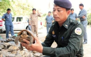 Major Joint Rescue Operation Wildlife Rapid Rescue Team Major Bust 320x202