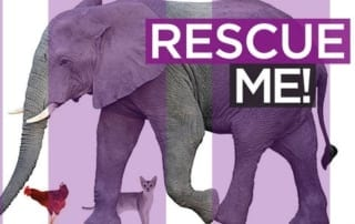 Wildlife Alliance CEO, Suwanna Gauntlett, Key Note Speaker at Animal Rescue Event Wildlife Alliance CEO, Suwanna Gauntlett, Key Note Speaker at Animal Rescue Event Animal Rescue Event 320x202