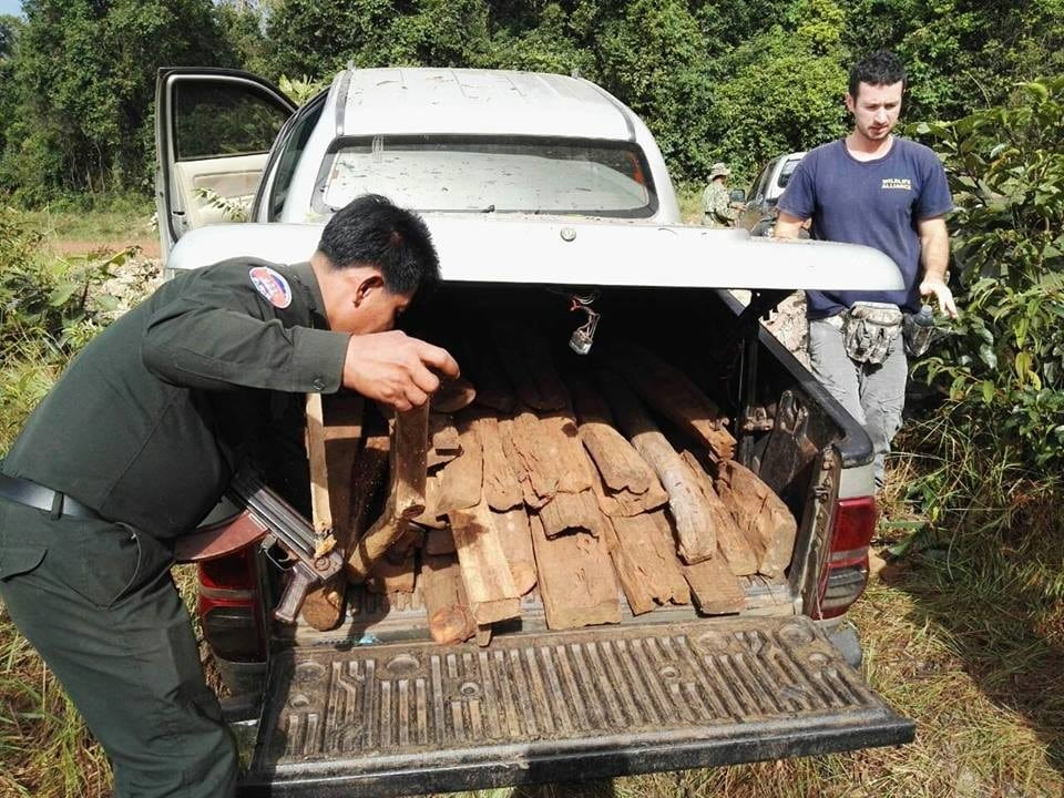 Two ranger units joined forces to stop suspects from illegally transporting 357kg luxury wood Wildlife Alliance Rangers luxury wood 2