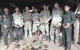 Wildlife Alliance rangers seized live wildlife in a residential home Cambodia live wildlife rescued 320x202