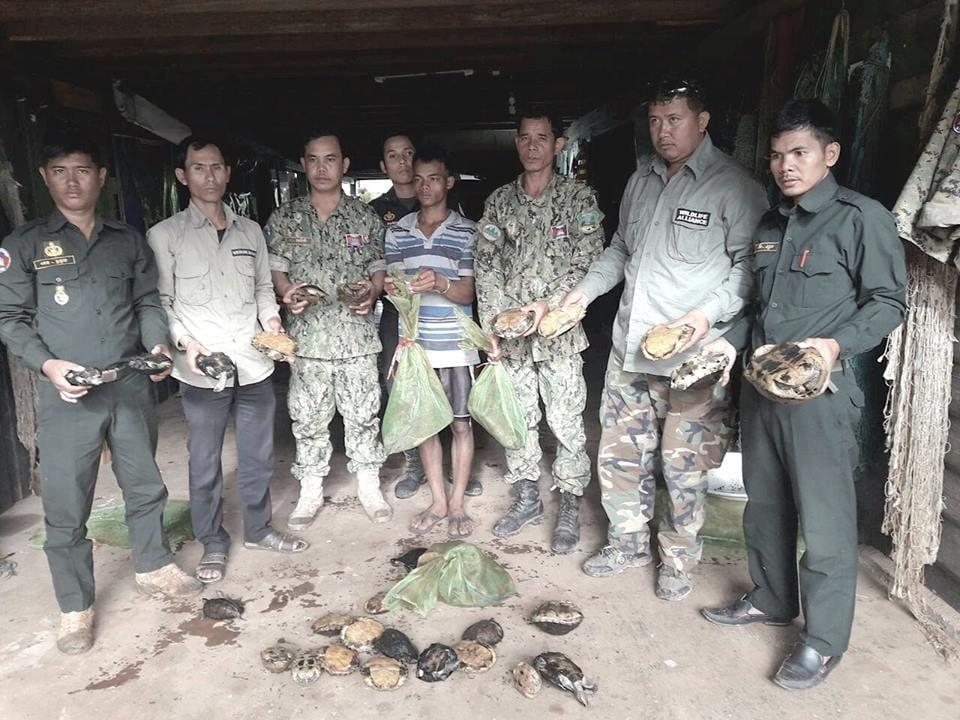Wildlife Alliance rangers seized live wildlife in a residential home Wildlife Alliance rangers seized live wildlife in a residential home Cambodia live wildlife rescued