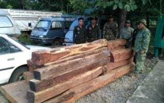 Chambok ranger station confiscated 18 pieces (1.85m3) of luxury wood worth thousands of dollars Chambok ranger station confiscated 18 pieces (1.85m3) of luxury wood worth thousands of dollars Wildlife Alliance Ranges confiscated luxury wood 320x202