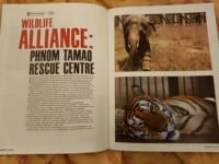 Documenting Our Conservation Work! AsiaLIFE Wildlife Alliance article 200x150