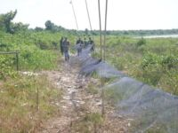 Rangers from Koh Pao Dismantled and Collected 1 km of Bird Netting Wildlife Alliance Rangers from Koh Pao 200x150