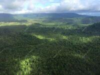 Southern Cardamom National Park Southern Cardamom National Park 200x150