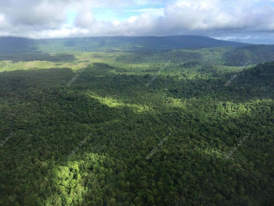southern cardamom national park Southern Cardamom National Park Southern Cardamom National Park