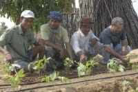 Start a Conversation this Earth Day – April 22 Earth Day Cambodia Community 200x134