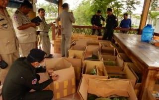 Wildlife Police International Trade Wildlife Cambodia 320x202