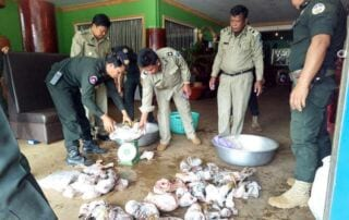 Two fined for holding illegal meat Two fined for holding illegal meat 59a82298e6d86 Wildlife Alliance RangersjpgWildlife Alliance Rangers 320x202