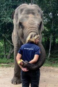 Phnom Tamao Wildlife Rescue Center team Phnom Tamao Wildlife Rescue Center team Lucky elephant 2 200x300