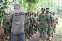 Ranger Training session in Kampong Thom by Wildlife Alliance Ranger training by Wildlife Alliance phisical training Edduard Lefter 200x133