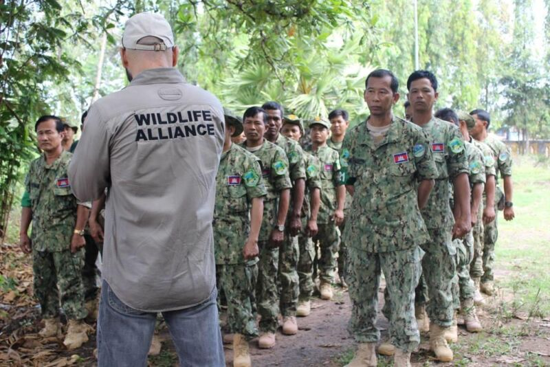 Ranger Training session in Kampong Thom by Wildlife Alliance Ranger training by Wildlife Alliance phisical training Edduard Lefter 800x534