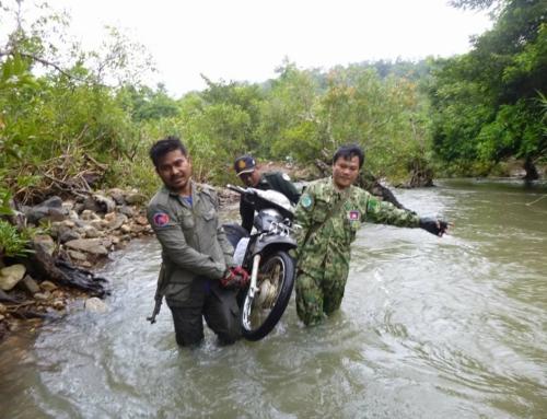 Wildlife Alliance Rangers fighting loggers in Cambodia