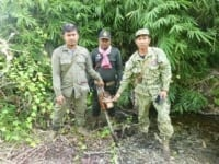 wildlife alliance rangers fighting loggers in cambodia Wildlife Alliance Rangers fighting loggers in Cambodia Rangers stop logger 200x150