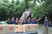 lucky recently celebrated her 18th birthday party Lucky recently celebrated her 18th birthday party The elephant and the team 200x133