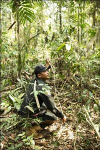 Steung Proat Wildlife Alliance Patrol Station rangers Wildlife Alliance Rangers Dismantle snare 200x300