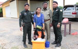 You call this traditional medicine? Wildlife Police Cambodia Stop traditional medicine 320x202