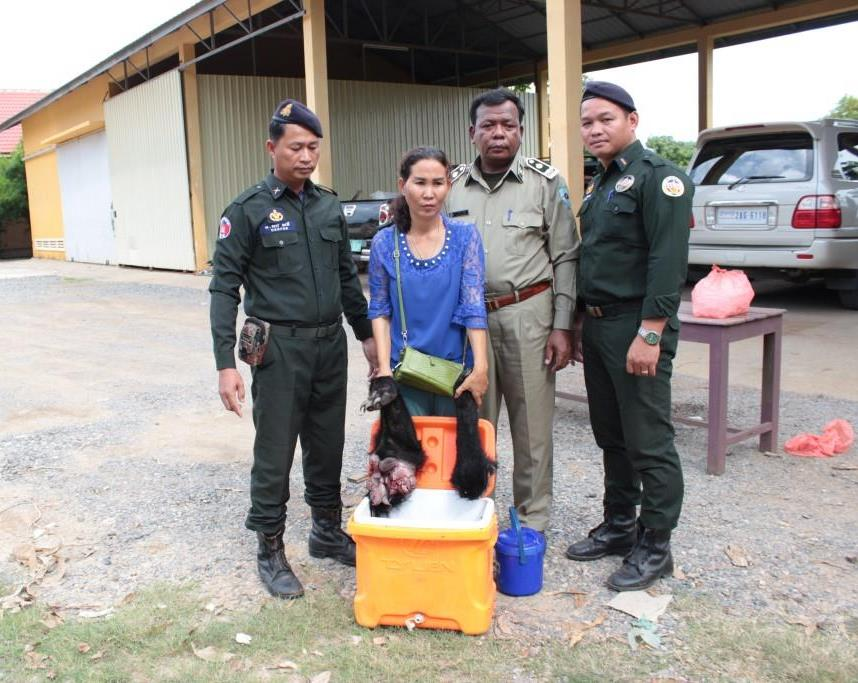 You call this traditional medicine? You call this traditional medicine? Wildlife Police Cambodia Stop traditional medicine