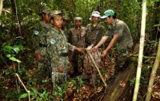 VOTE - Sustainable livelihoods and tourism VOTE – Sustainable livelihoods and tourism Community Forest Rangers 10 320x202