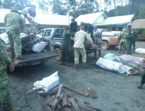 Wildlife Alliance Rangers discovered precious timber stock