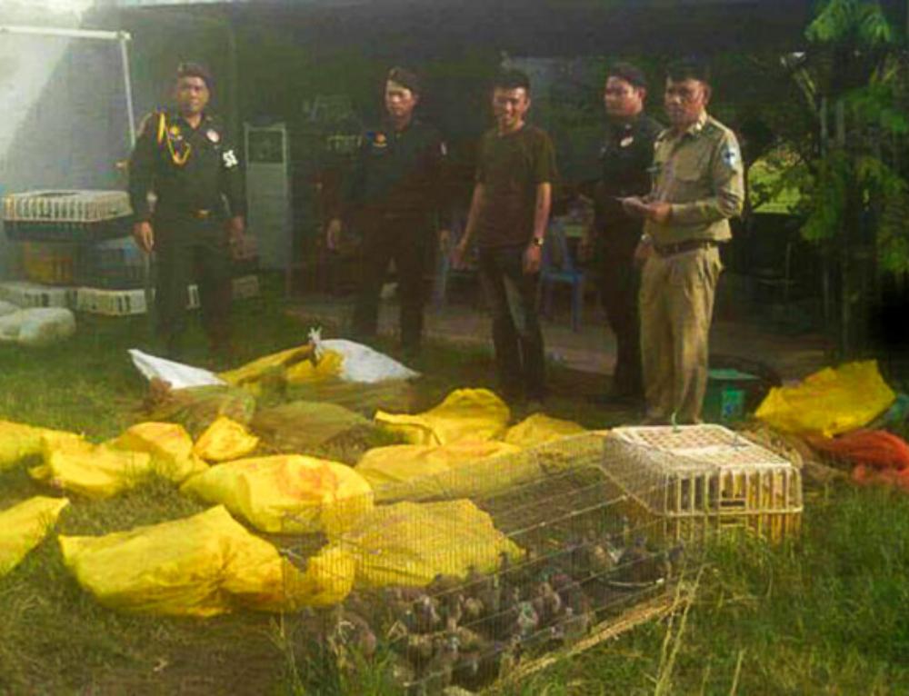 Wildlife seized in Prey Veng