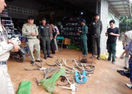 wildlife rapid rescue team – disparate duties… Wildlife Rapid Rescue Team – disparate duties… illegal wildlife parts
