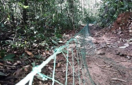 Wildlife traps removed from the forest floor pangoline net cambodia 460x295