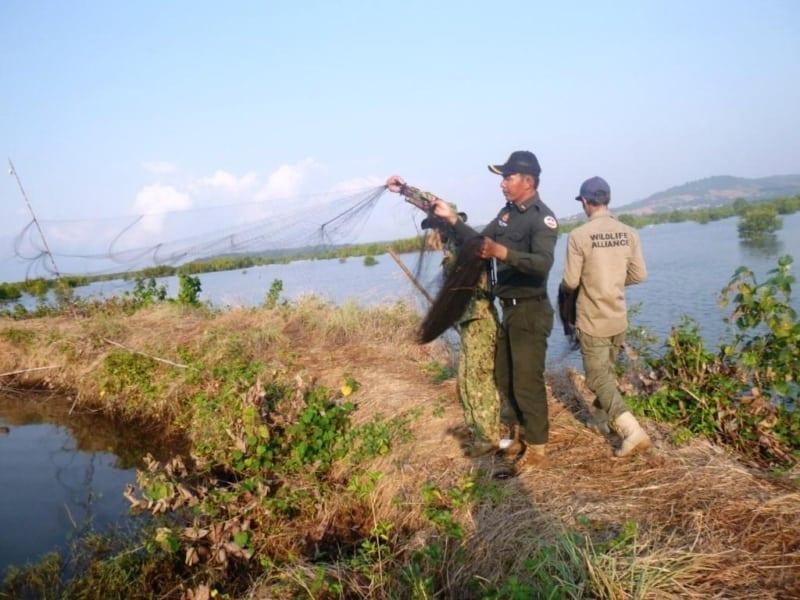 dr. thomas gray - the wildlife snaring crisis Dr. Thomas Gray – The wildlife snaring crisis wildlife snaring crisis 13 800x600