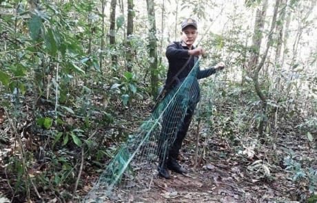 Wildlife traps removed from the forest floor wildlife snaring crisis pangoline net 460x295