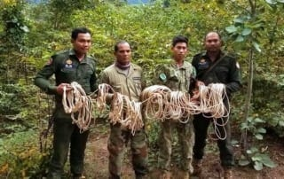 chambak patrol station - 5 chainsaws and 131 rope snares Chambak Patrol Station – 5 chainsaws and 131 rope snares Animal traps in asia 320x202