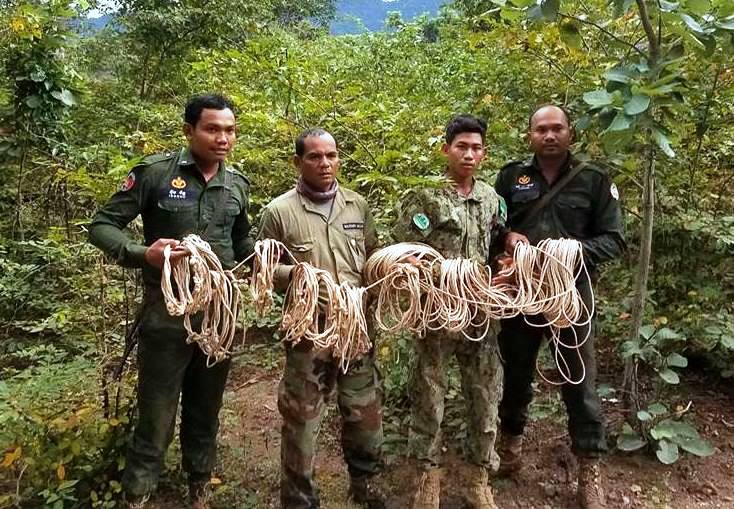 chambak patrol station - 5 chainsaws and 131 rope snares Chambak Patrol Station – 5 chainsaws and 131 rope snares Animal traps in asia
