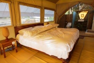 cardamom tented camp Cardamom Tented Camp cardamom tented camp Bedroom 400x267
