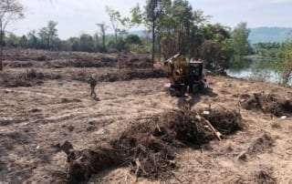 forest destroyed 8 hectares of forest destroyed! One excavator confiscated and 2 people in prison Escavator used in forest destruction 320x202
