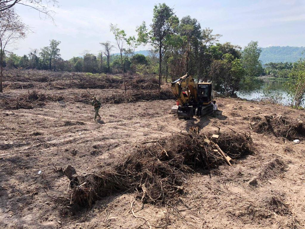 forest destroyed 8 hectares of forest destroyed! One excavator confiscated and 2 people in prison Escavator used in forest destruction