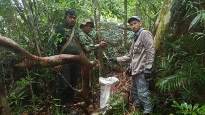 hunter camp Hunter camp deep in the Cardamom Rainforest Landscape Forest Guards save wild animals 400x225