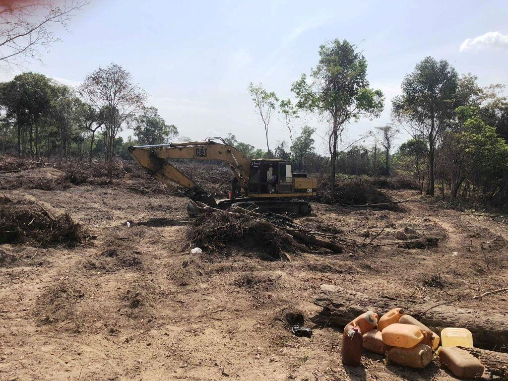 forest destroyed 8 hectares of forest destroyed! One excavator confiscated and 2 people in prison Land grabbing cambodia Escavator