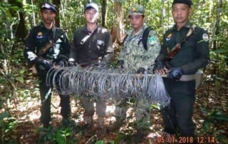 1 Patrol. 150 Snares. Evidence of a Conservation Crisis. Snares Cambodia animal traps 320x202