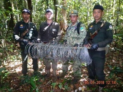 forest guards Hundreds of animal traps, 2 motorbikes confiscated for rose wood transportation Snares Cambodia animal traps 400x300