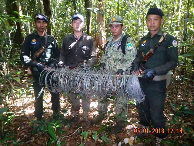 forest guards Hundreds of animal traps, 2 motorbikes confiscated for rose wood transportation Snares Cambodia animal traps
