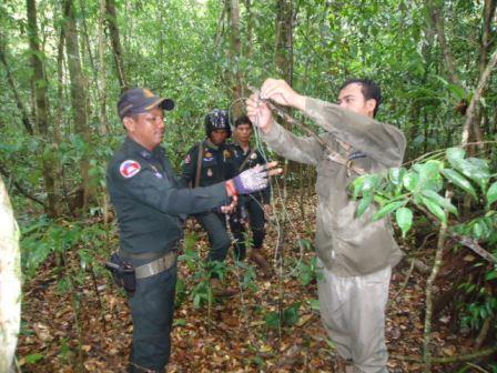 cardamom forest Cardamom Protection Cardamom Protection Wildlife Alliance Rangers 9 1