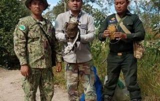 Sponsor a ranger station Chambak rangers save black eagle 320x202