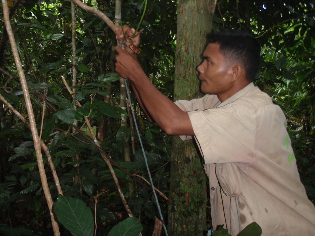 community rangers CAPU Community Rangers in Cambodiua saving Wildife