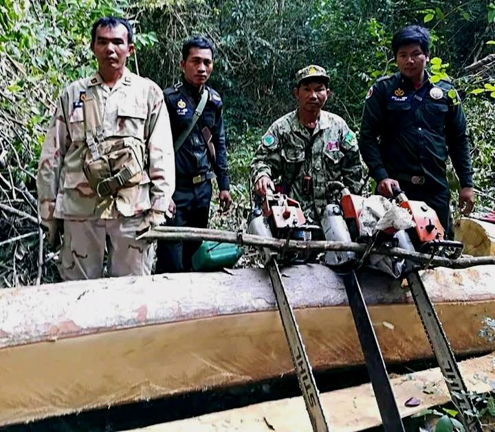 illegal chainsaws Chambak rangers confiscated 4 chainsaws Forest Protection Cambodia illegal chainsaws