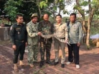 poaching Rangers combat poaching, human-wildlife conflict and the illegal pet trade Forest Rangers crocodile Cambodia 200x150