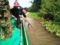 Wildlife seized in Pursat Wildlife seized in Pursat Wildlife police cambodia snake release 200x150